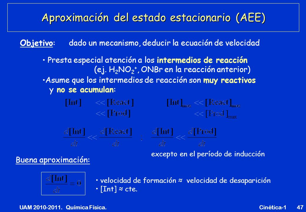 Aproximación del estado estacionario (AEE)