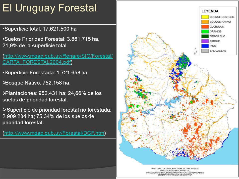 El Uruguay Forestal Superficie total: 17.621.500 ha