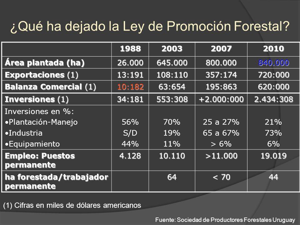 ¿Qué ha dejado la Ley de Promoción Forestal