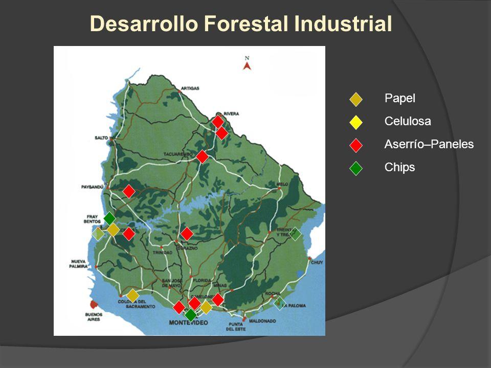 Desarrollo Forestal Industrial