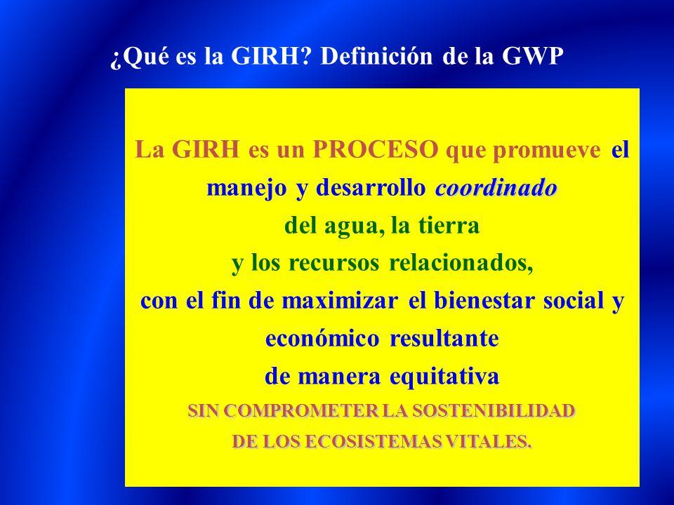 ¿Qué es la GIRH Definición de la GWP