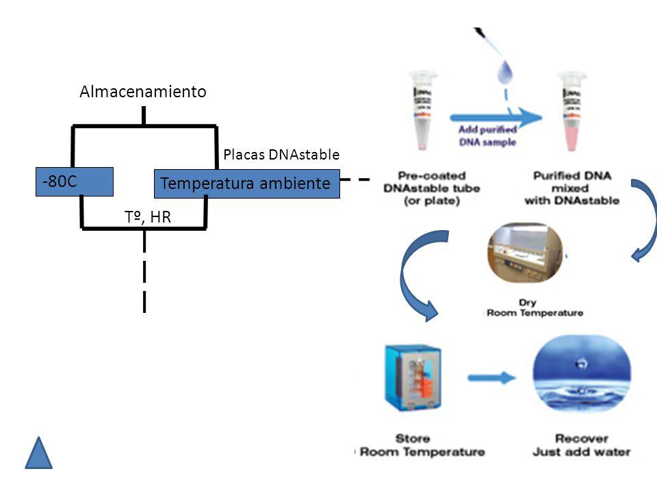 Almacenamiento Placas DNAstable -80C Temperatura ambiente Tº, HR