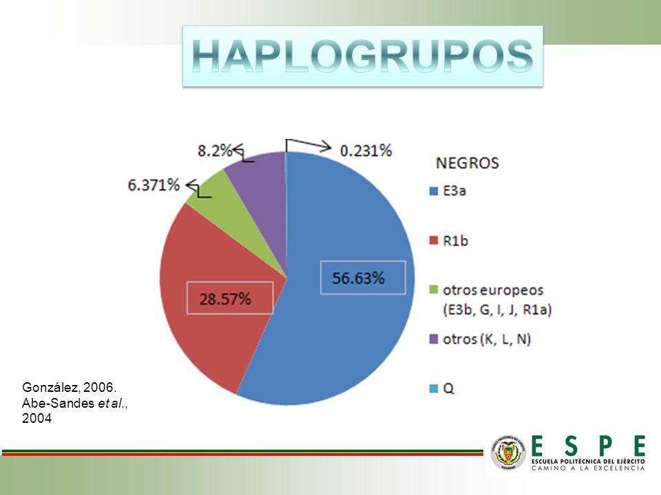 HAPLOGRUPOS González, 2006. Abe-Sandes et al., 2004
