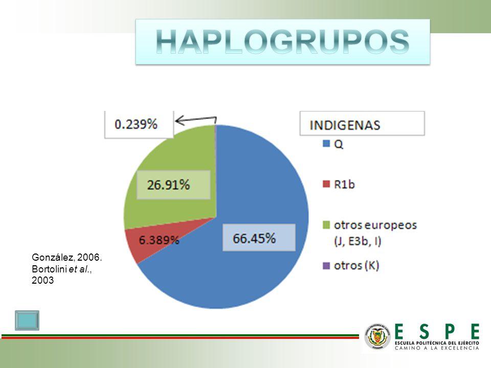 HAPLOGRUPOS González, 2006. Bortolini et al., 2003