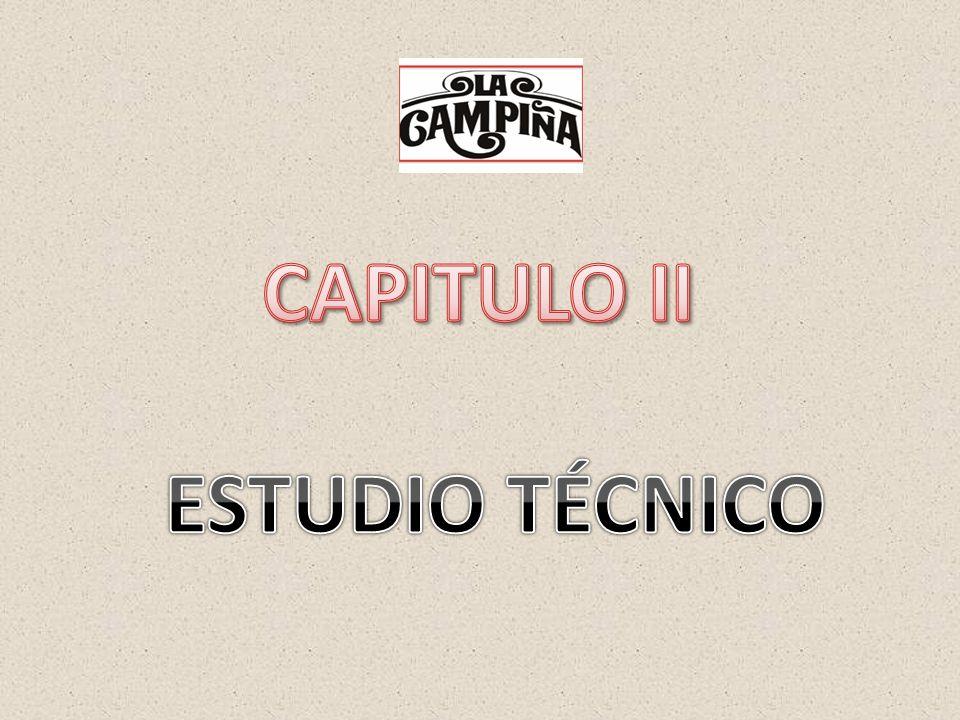 CAPITULO II ESTUDIO TÉCNICO