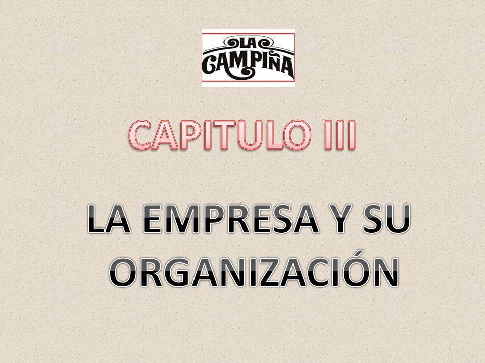 CAPITULO III LA EMPRESA Y SU ORGANIZACIÓN