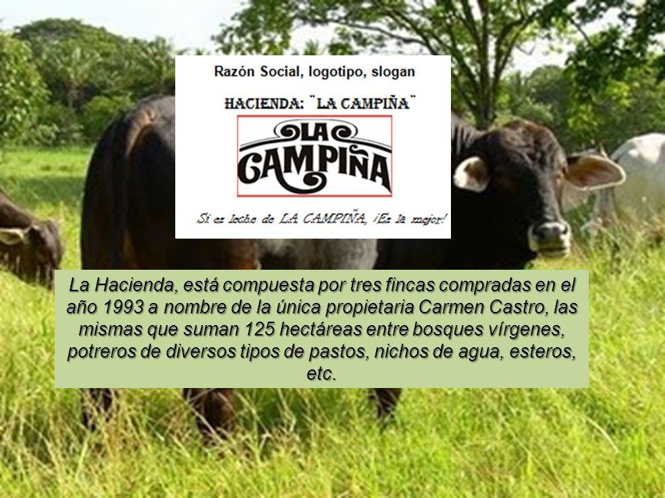 La Hacienda, está compuesta por tres fincas compradas en el año 1993 a nombre de la única propietaria Carmen Castro, las mismas que suman 125 hectáreas entre bosques vírgenes, potreros de diversos tipos de pastos, nichos de agua, esteros, etc.