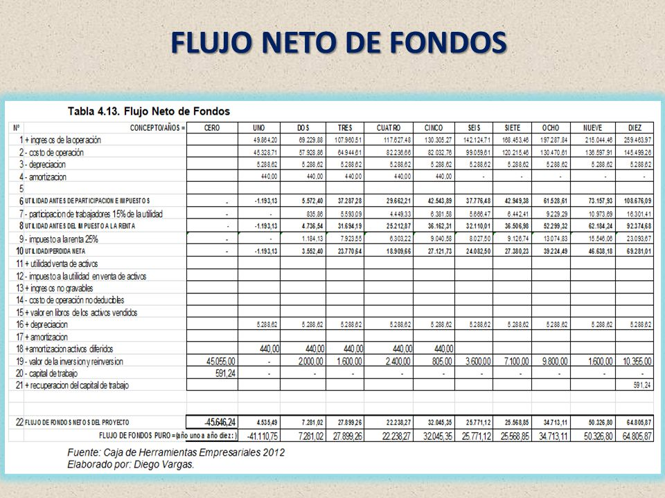 FLUJO NETO DE FONDOS
