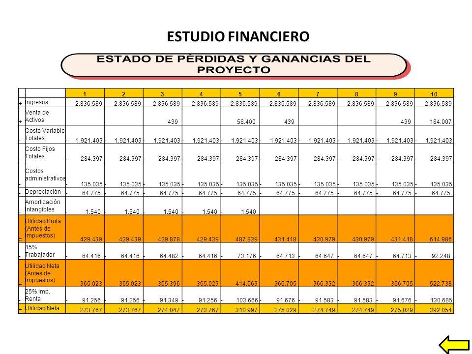 ESTUDIO FINANCIERO 1 2 3 4 5 6 7 8 9 10 + Ingresos 2.836.589