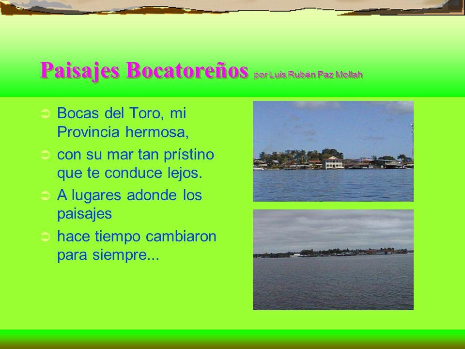 Paisajes Bocatoreños por Luis Rubén Paz Mollah
