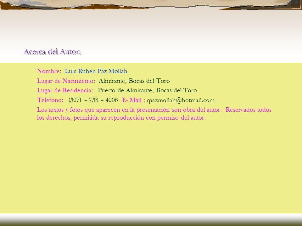 Acerca del Autor: Nombre: Luis Rubén Paz Mollah