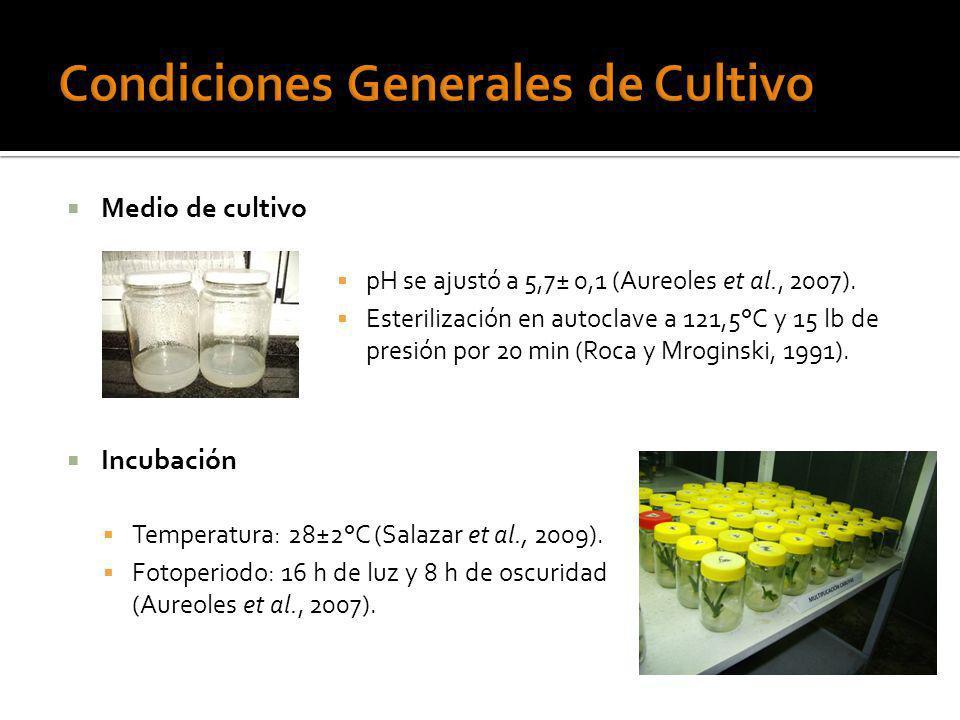Condiciones Generales de Cultivo