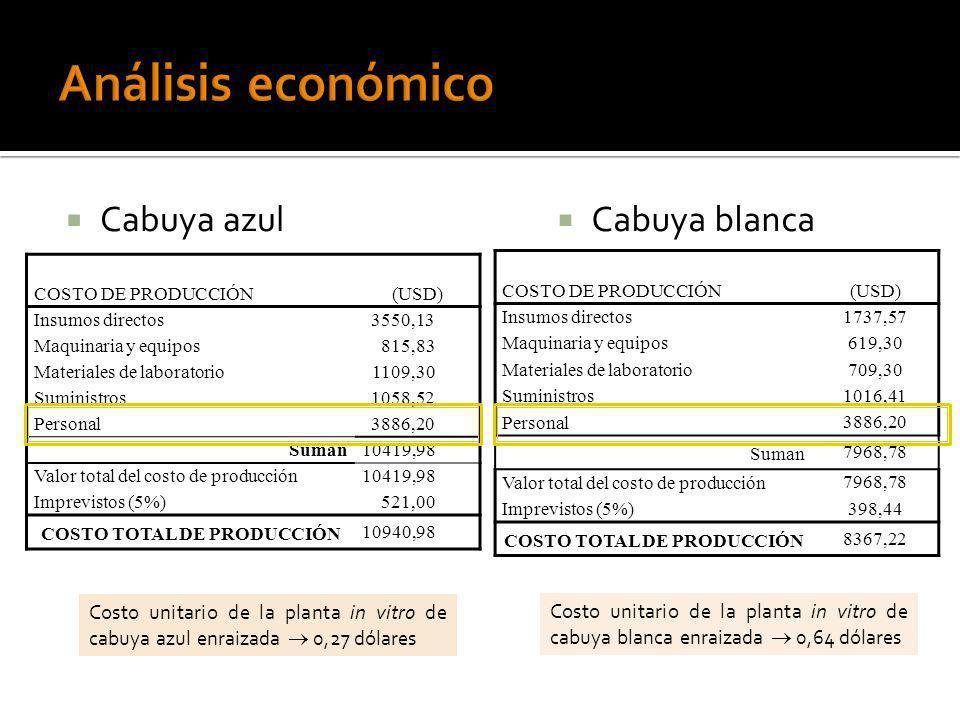 COSTO TOTAL DE PRODUCCIÓN COSTO TOTAL DE PRODUCCIÓN