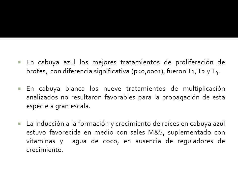 En cabuya azul los mejores tratamientos de proliferación de brotes, con diferencia significativa (p<0,0001), fueron T1, T2 y T4.