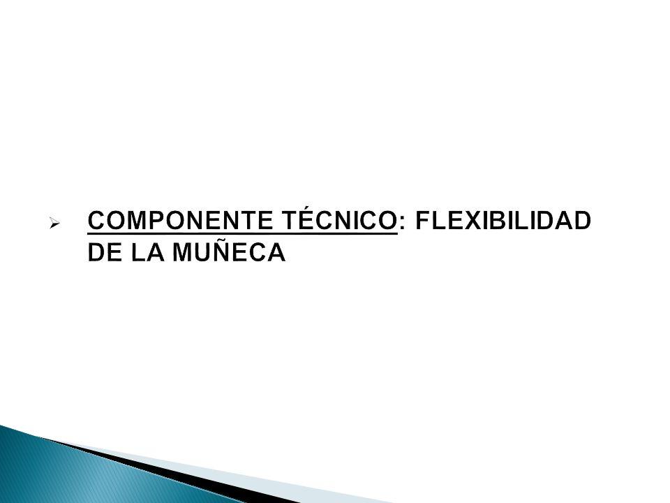 COMPONENTE TÉCNICO: FLEXIBILIDAD DE LA MUÑECA