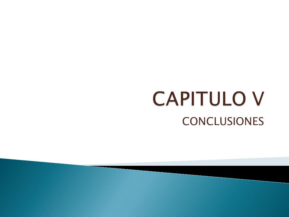 CAPITULO V CONCLUSIONES