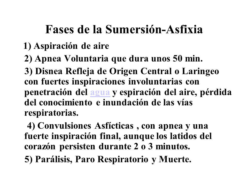 Fases de la Sumersión-Asfixia