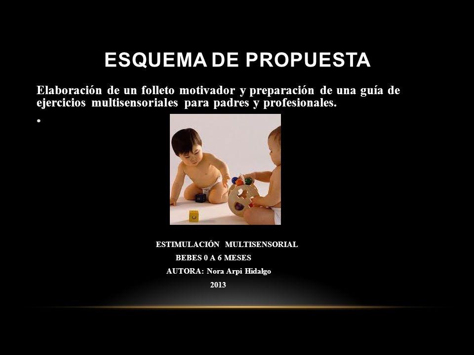 ESQUEMA DE PROPUESTA Elaboración de un folleto motivador y preparación de una guía de ejercicios multisensoriales para padres y profesionales.