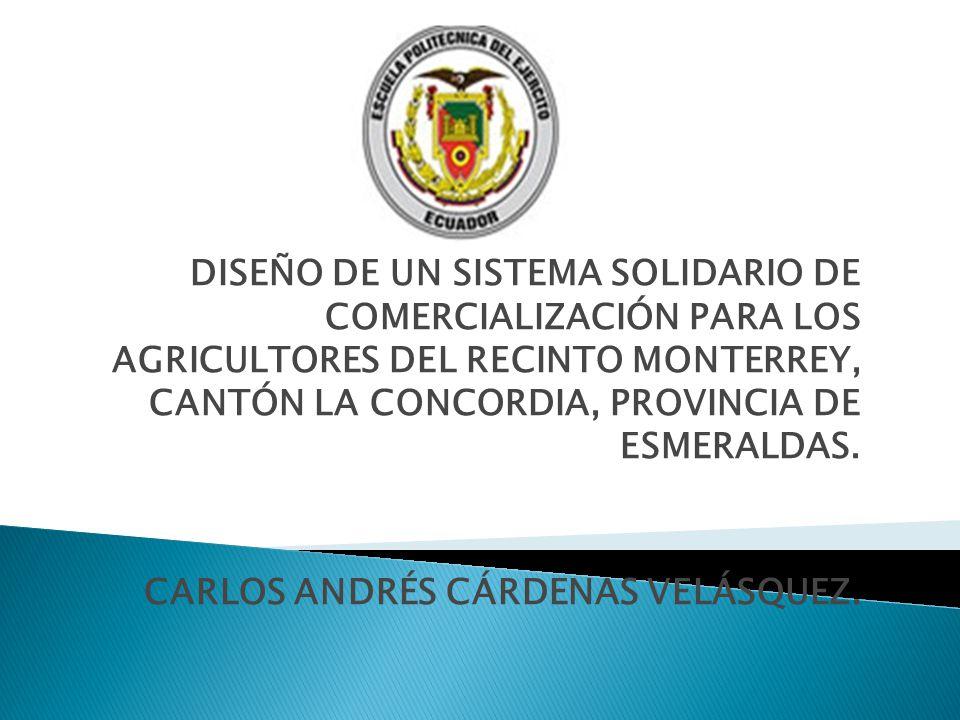 DISEÑO DE UN SISTEMA SOLIDARIO DE COMERCIALIZACIÓN PARA LOS AGRICULTORES DEL RECINTO MONTERREY, CANTÓN LA CONCORDIA, PROVINCIA DE ESMERALDAS.