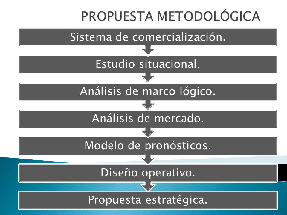 PROPUESTA METODOLÓGICA
