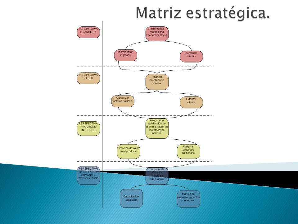 Matriz estratégica.