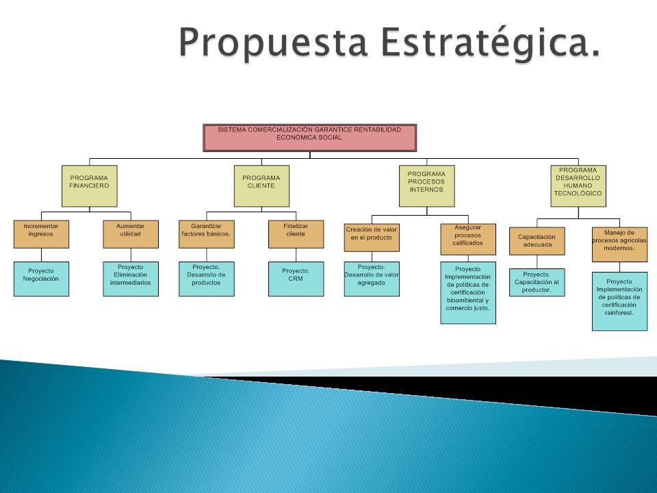 Propuesta Estratégica.