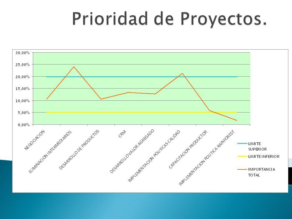 Prioridad de Proyectos.