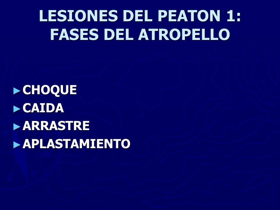 LESIONES DEL PEATON 1: FASES DEL ATROPELLO