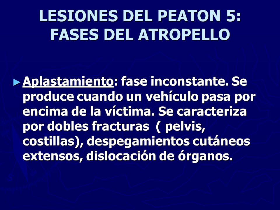 LESIONES DEL PEATON 5: FASES DEL ATROPELLO