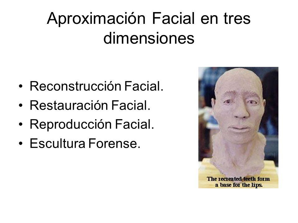 Aproximación Facial en tres dimensiones