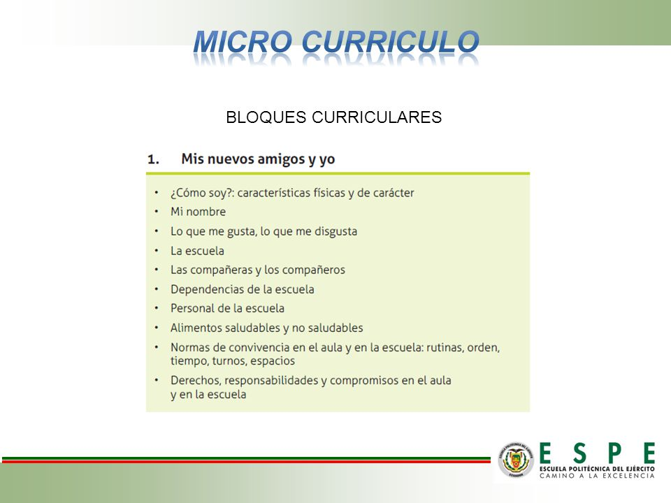 MICRO CURRICULO BLOQUES CURRICULARES