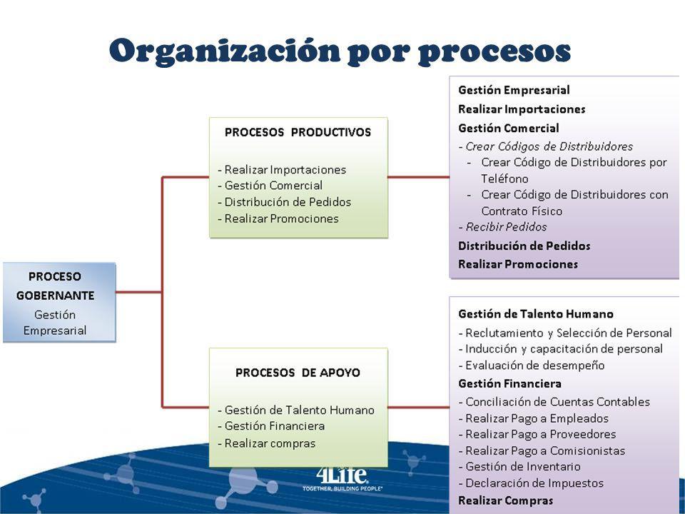 Organización por procesos