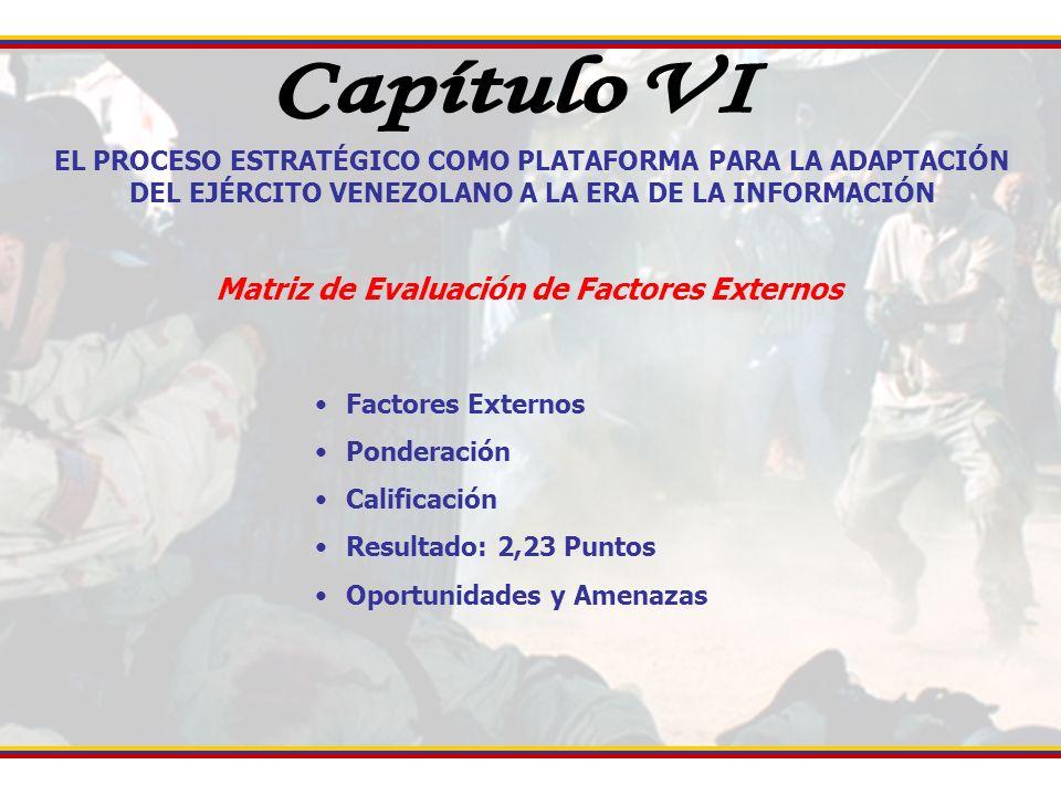 Capítulo VI Matriz de Evaluación de Factores Externos