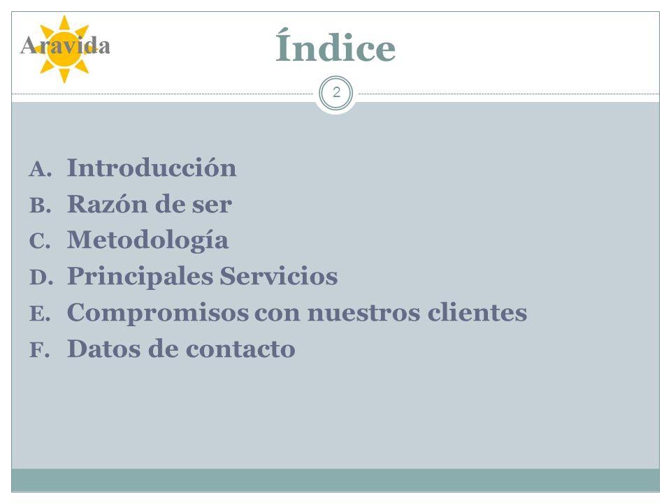 Índice Introducción Razón de ser Metodología Principales Servicios