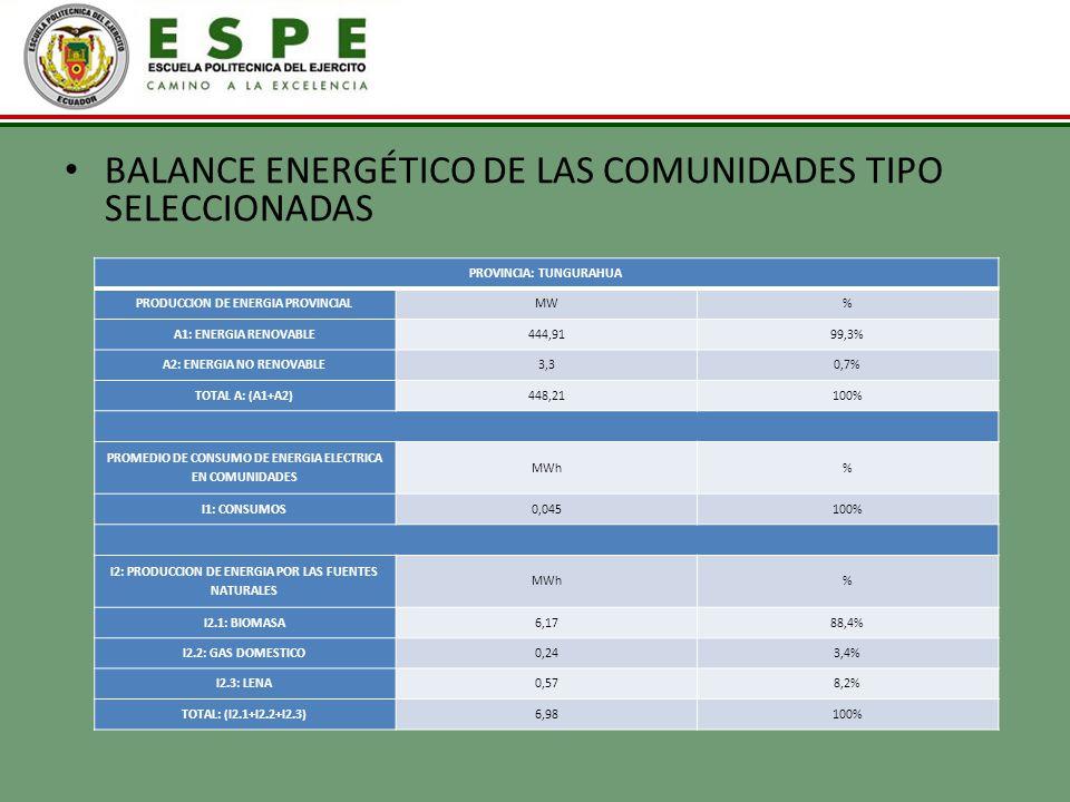 BALANCE ENERGÉTICO DE LAS COMUNIDADES TIPO SELECCIONADAS