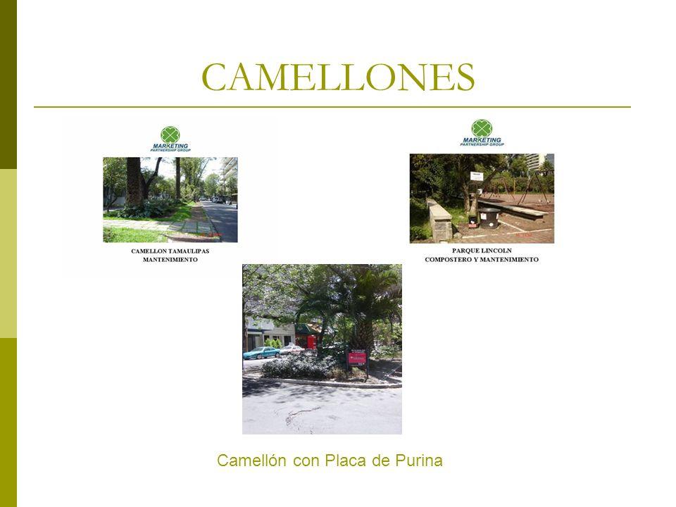 CAMELLONES Camellón con Placa de Purina