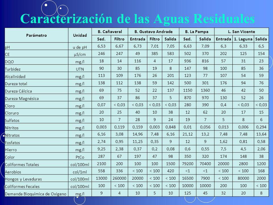 Caracterización de las Aguas Residuales