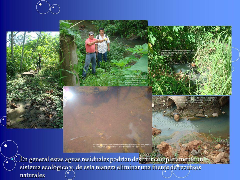En general estas aguas residuales podrían destruir completamente un sistema ecológico y, de esta manera eliminar una fuente de recursos naturales