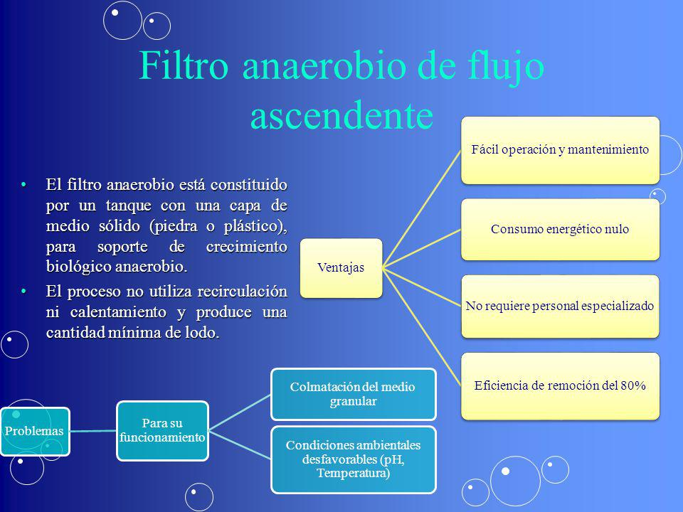 Filtro anaerobio de flujo ascendente