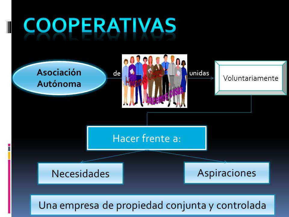 Una empresa de propiedad conjunta y controlada
