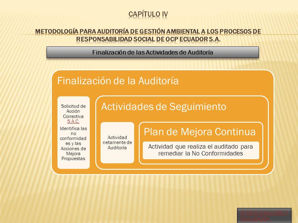 Finalización de las Actividades de Auditoría