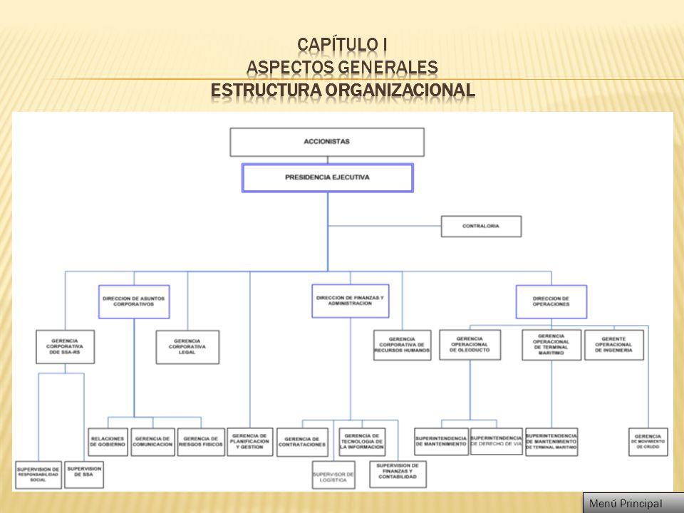 CAPÍTULO I ASPECTOS GENERALES ESTRUCTURA ORGANIZACIONAL