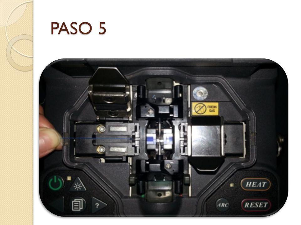 PASO 5