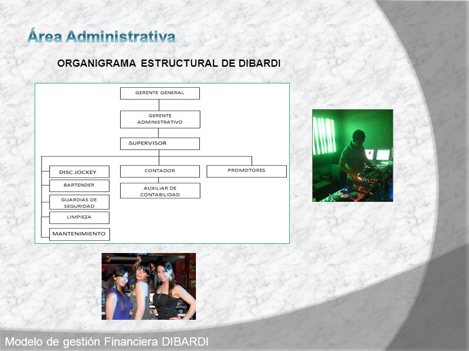 ORGANIGRAMA ESTRUCTURAL DE DIBARDI