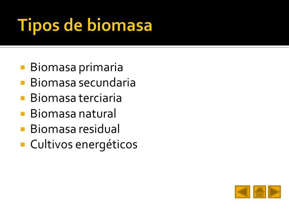Tipos de biomasa Biomasa primaria Biomasa secundaria Biomasa terciaria