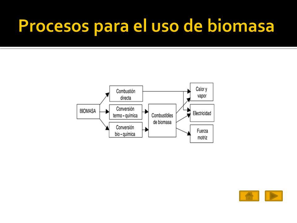 Procesos para el uso de biomasa