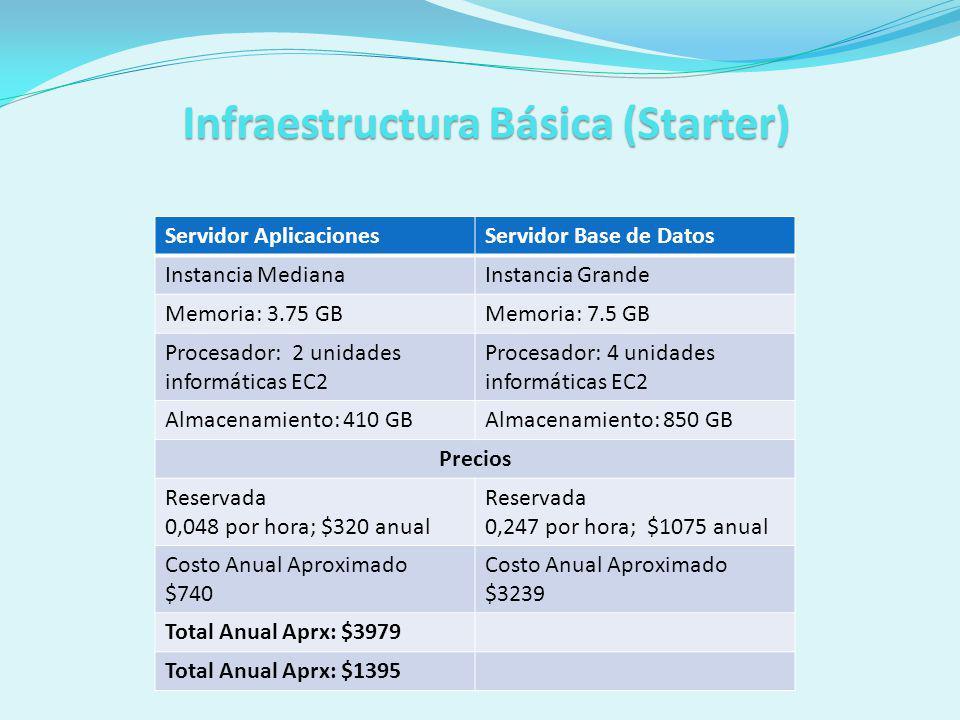 Infraestructura Básica (Starter)