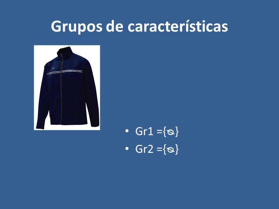 Grupos de características