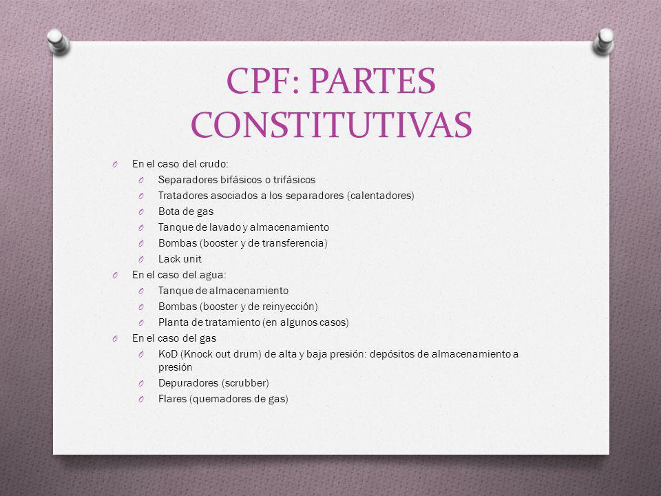 CPF: PARTES CONSTITUTIVAS