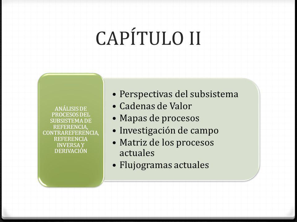 CAPÍTULO II Perspectivas del subsistema Cadenas de Valor